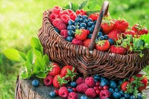 fructele-de-padure-in-timpul-alaptarii